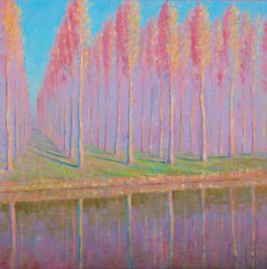 Poplars near the Doubs