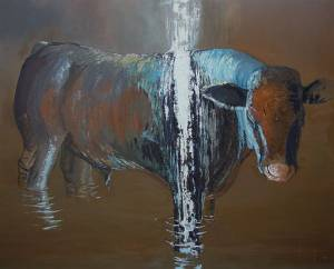 A Steer in a Storm