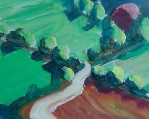 Field Pattern, Wicklow