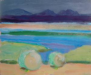 Bales on Bannow, Wexford