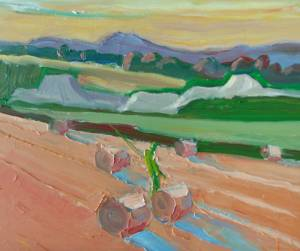 The Green Angler,  Slaney Valley